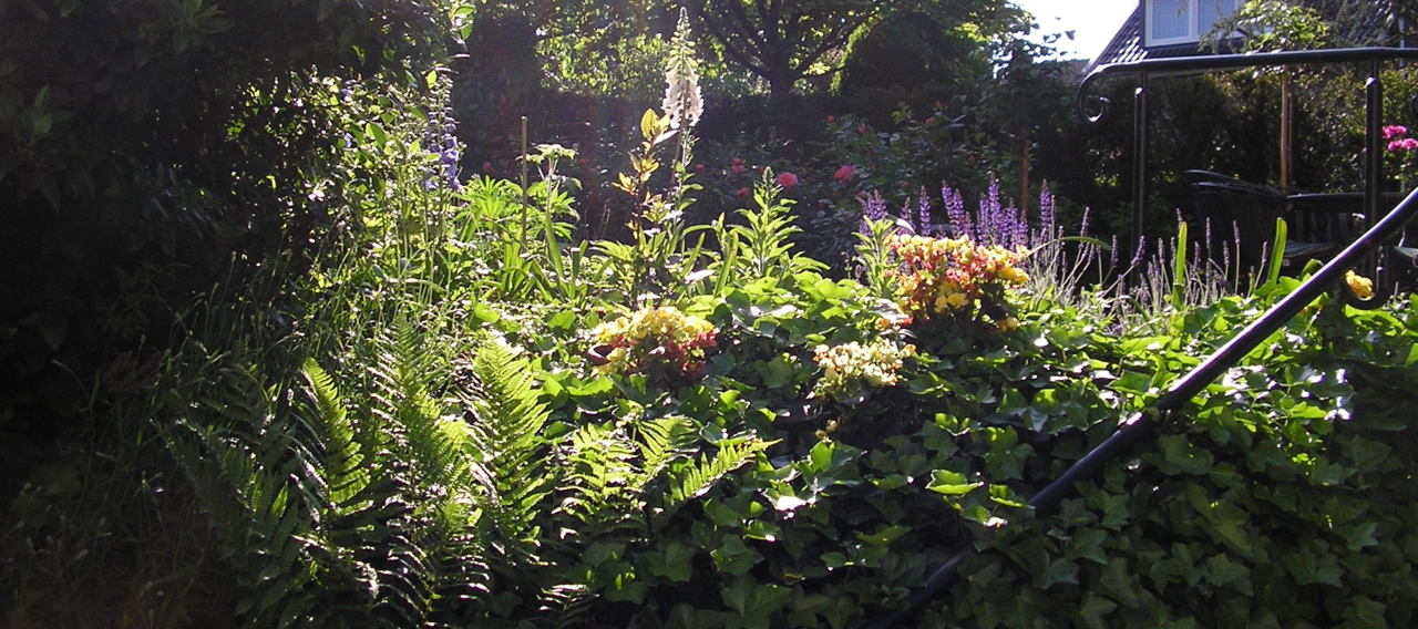 Garden-in-sunburst