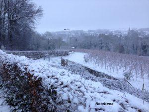 Noorbeek